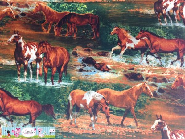 RESTSTÜCK 30 cm Baumwolle Pferde USA