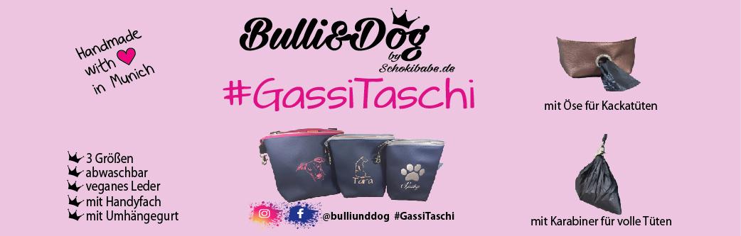 shopware_logo_bulli2