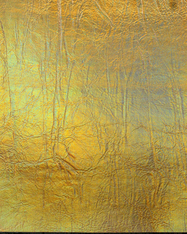 033A-046_Hologramm_Gold