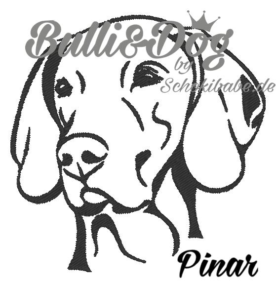 Pinar_8x8