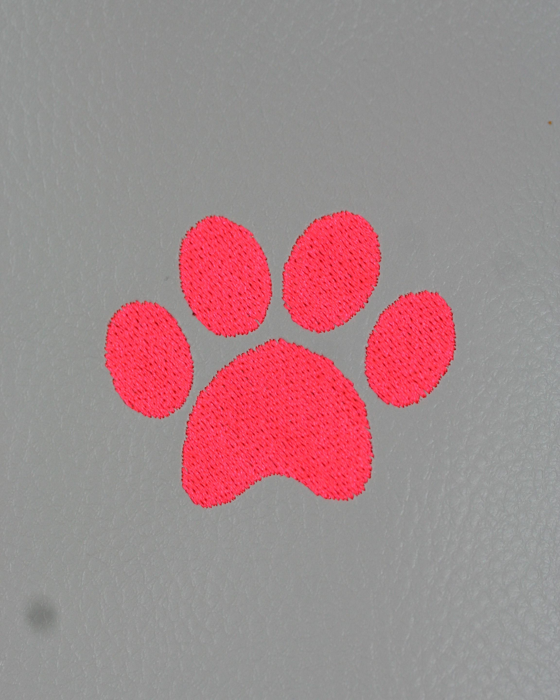 Neon-Pink-2922