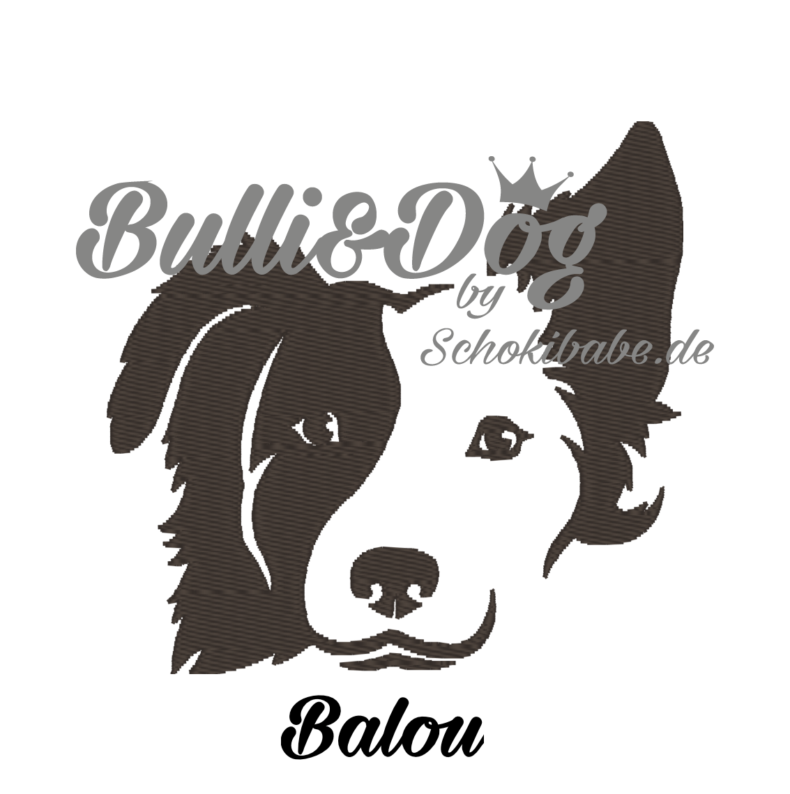Balou_Border-Collie_7x6-7-Kopie5b5c226cd72d4